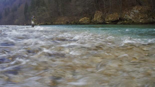 Sava Trzic 6